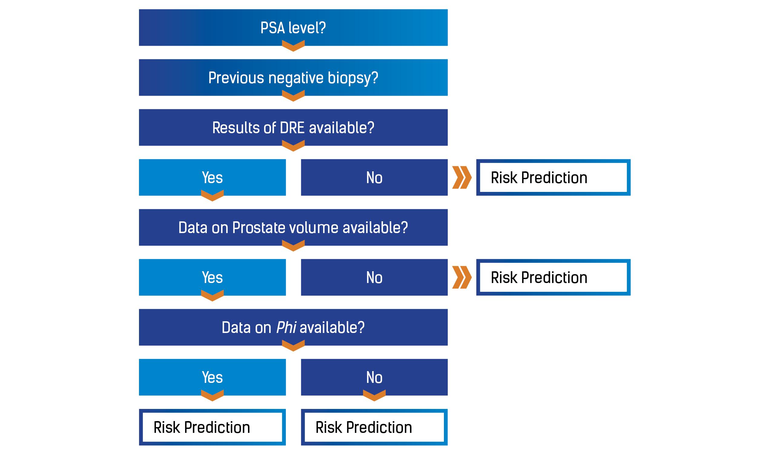 the rotterdam prostate cancer risk calculator decision tree psa prostate specific antigen dre digital rectal examination phi prostate health index